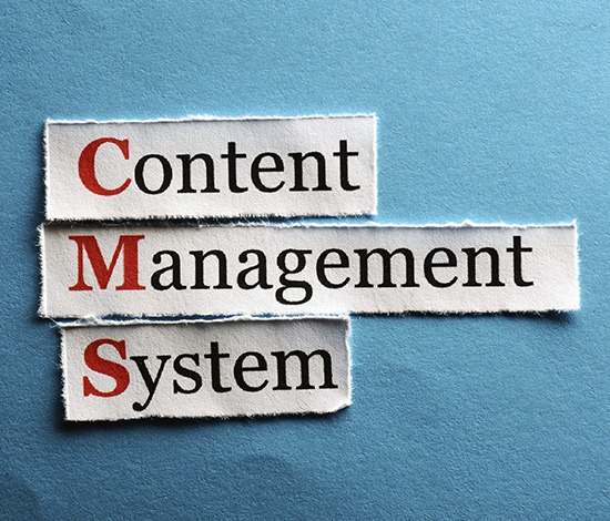 Image of the content management system we use for our Website Redesigns projects